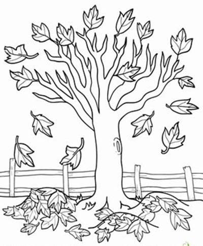 Картина осени раскраска. Раскраска: осень золотая для детей